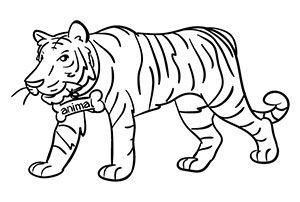 Image of a tiger for memorizing a number with the Major System or major method