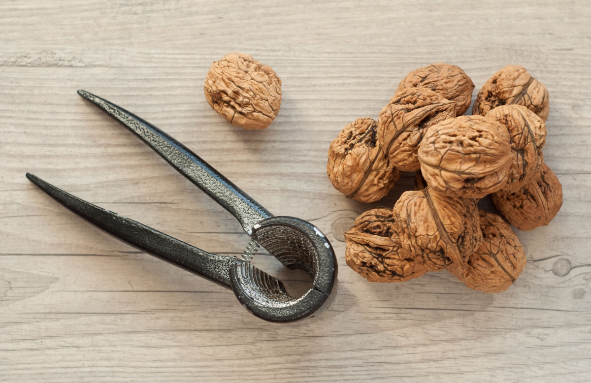 Image of walnuts which are beneficial for memory