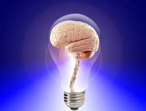 Image of a brain in a lightbulb to express having an integrated memory method