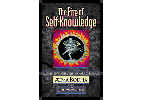 The Fire of Self Knowledge James Swartz Book Cover