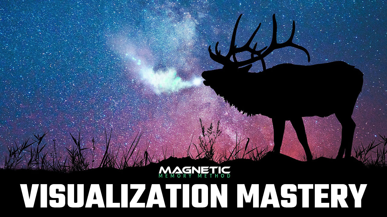 Visualization Mastery Course in the Magnetic Memory Method Masterclass