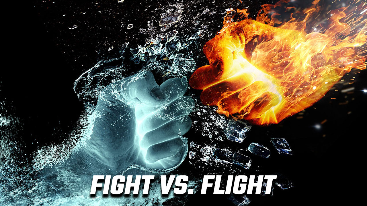 Image of a fist of ice and a fist of fire to illustrate the fight vs flight problem in memory palace training