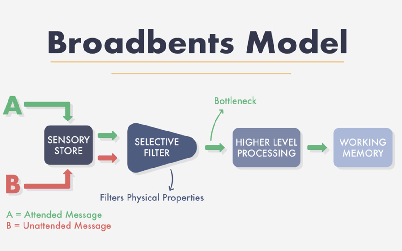 Broadbents Model of selective filtering