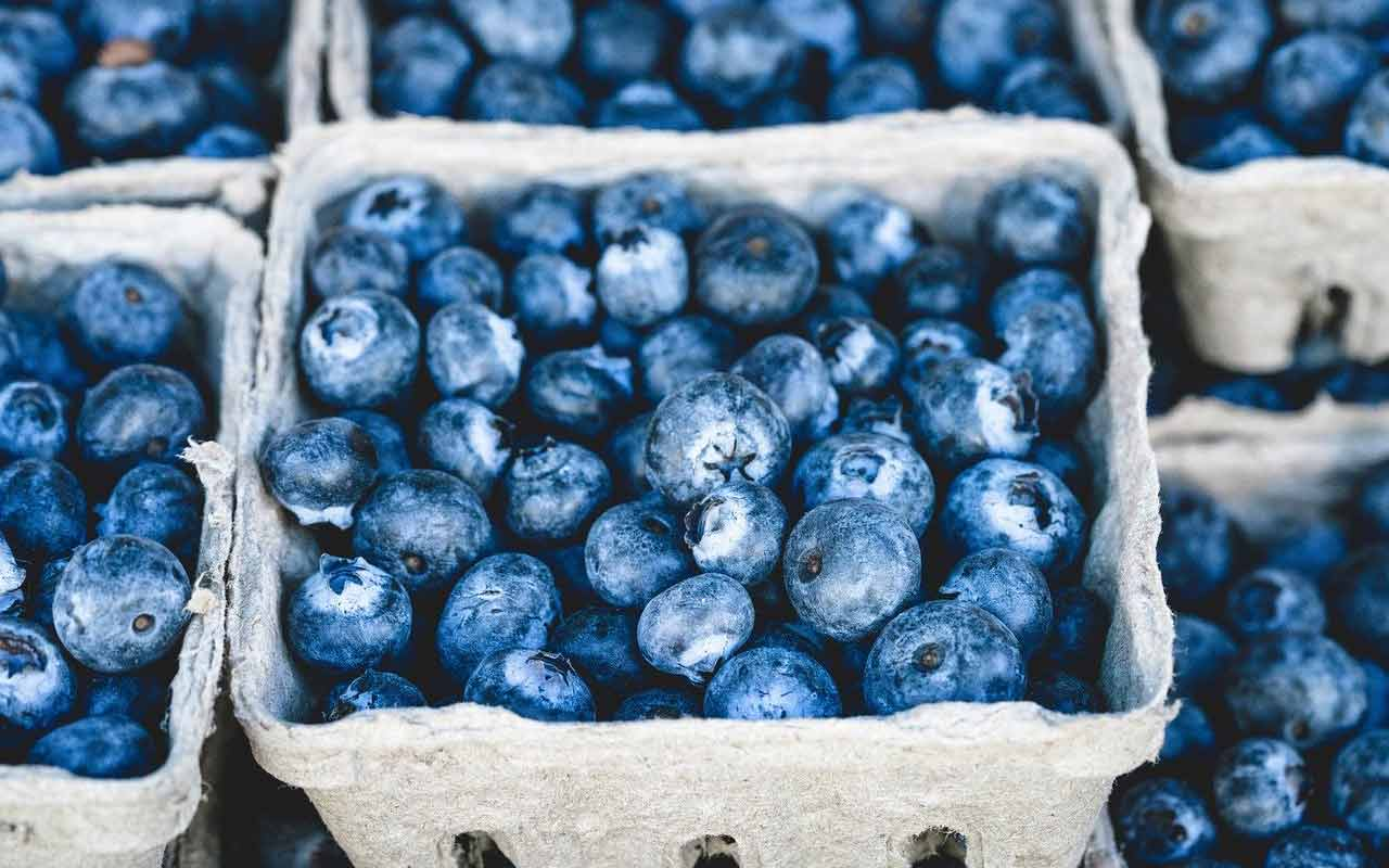 A container of blueberries, a brain superfood and a good addition to a sattvic diet.