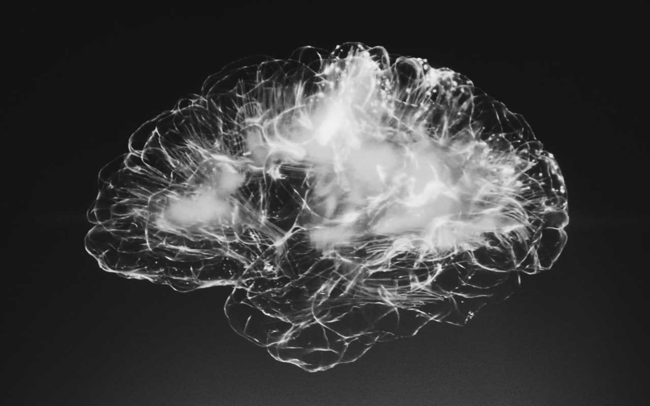 A black and white image of a brain. Autoimmune Encephalitis and other memory disorders can have powerful negative impacts on the brain.