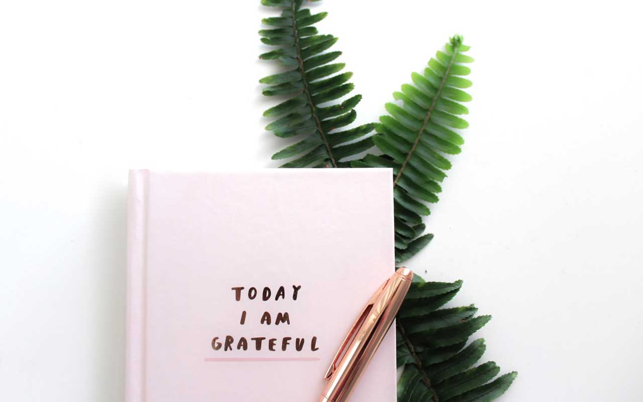 "A gratitude journal on top of fern leaves. The journal cover reads, ""Today I am grateful."""