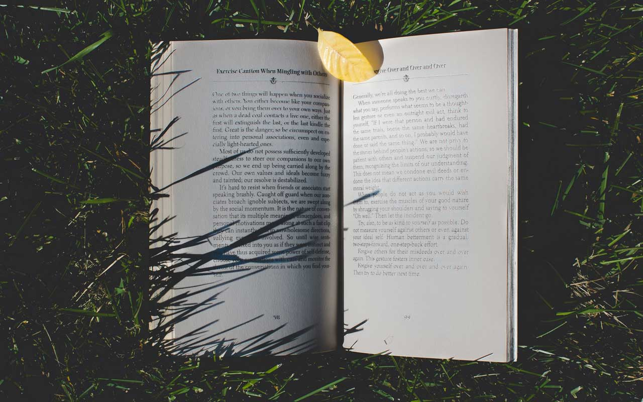 An open book lays in the grass. Reading books by and about memory experts is all part of your bigger memory strategy.
