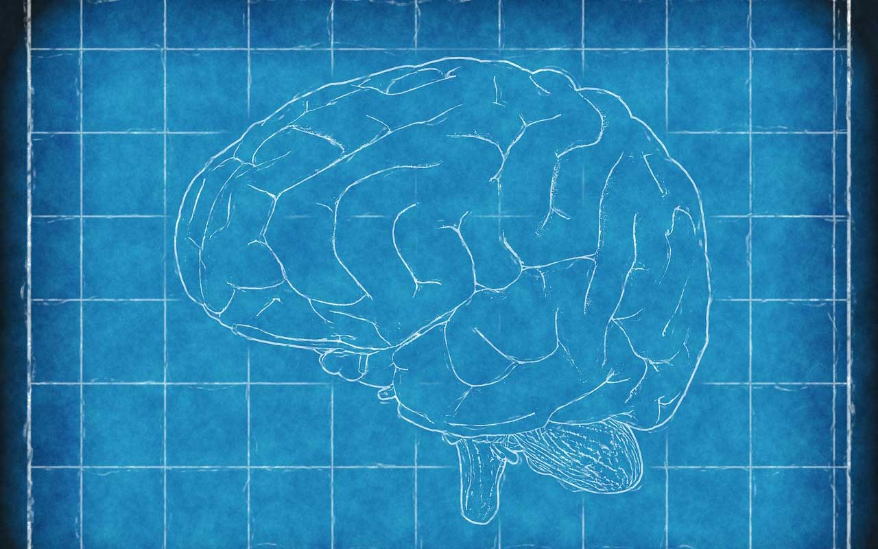 A sketch of a brain set against a blueprint background.
