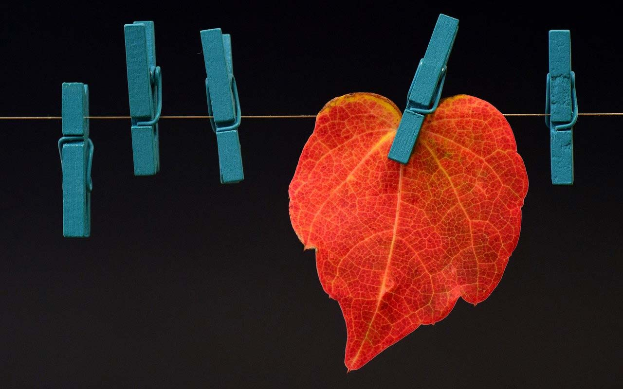 A red autumn leaf clipped on a wire with clothespins, an example of an associative image.