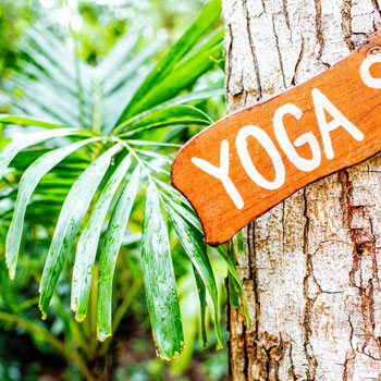 Yoga for Concentration and Memory: Everything You Need to Know