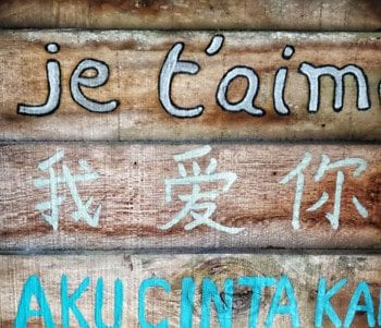 How to Become Fluent in a Language: Everything You Need to Know