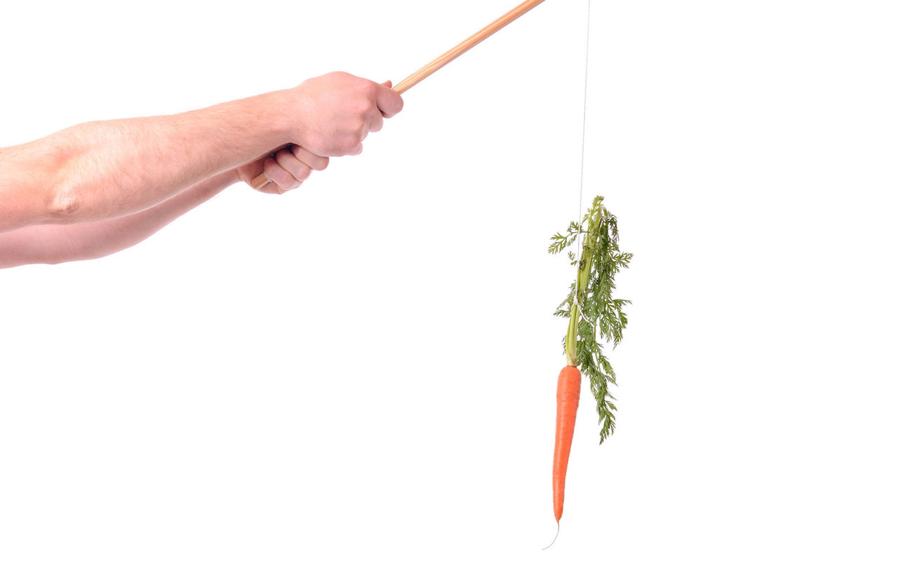 A person holds up a stick with a carrot tied to it. Carrot and stick motivation is a form of extrinsic motivation.