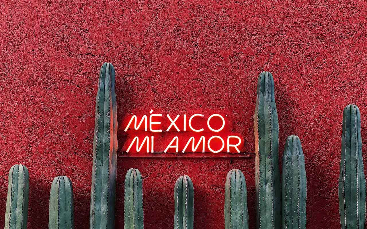"A neon sign against a bright red painted wall with cacti reads, ""Mexico Mi Amor."" Spanish is a top business language."