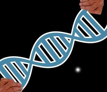 amino acids feature image