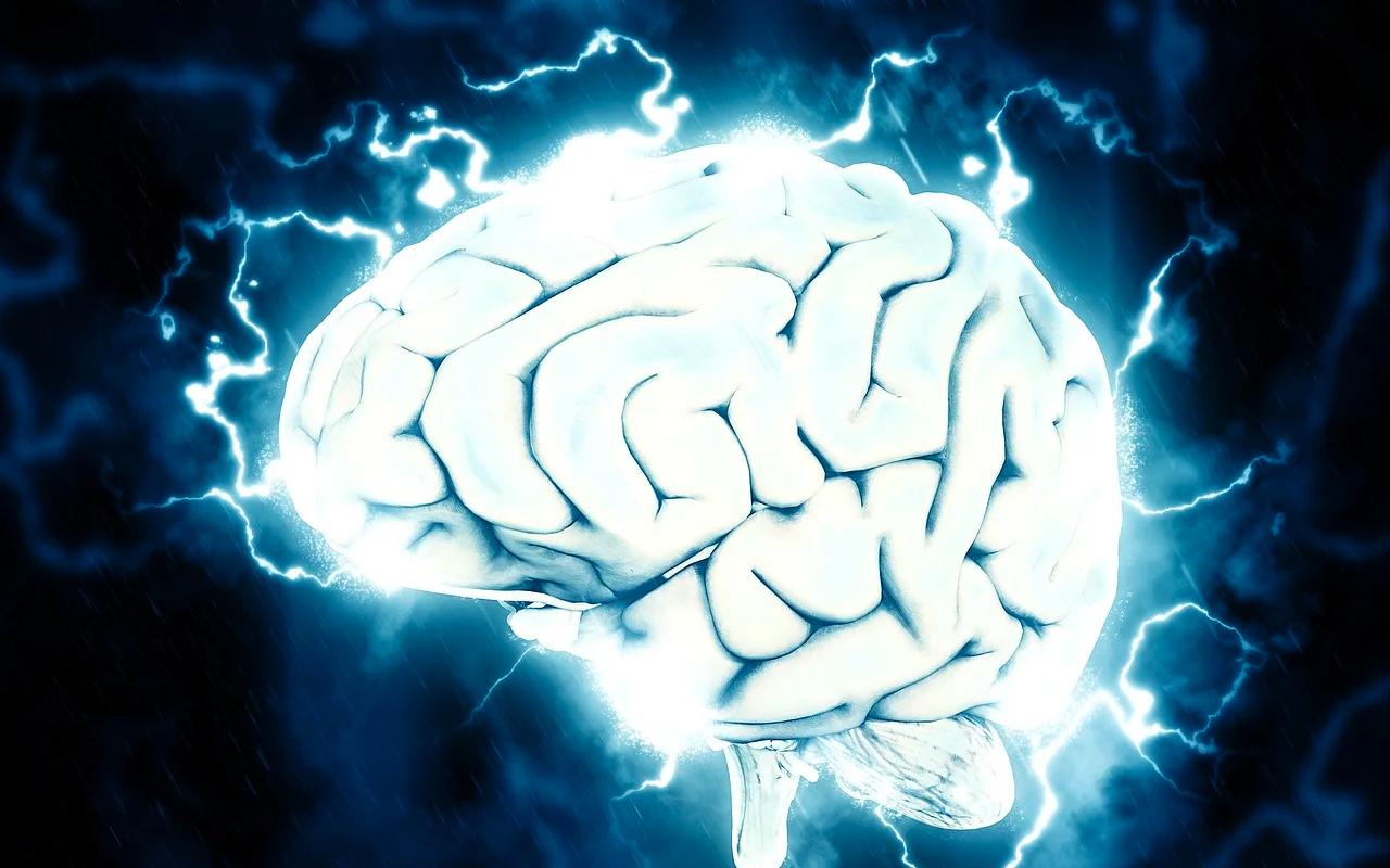 brain electrical activities