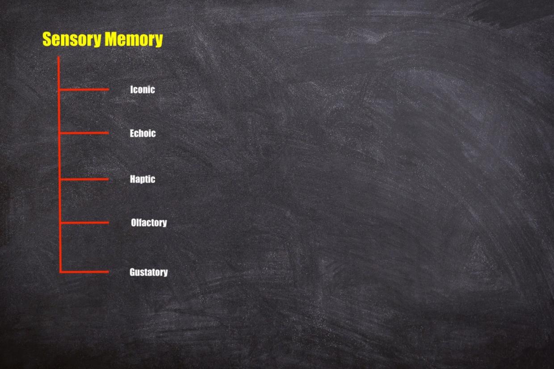 sensory memory subtypes