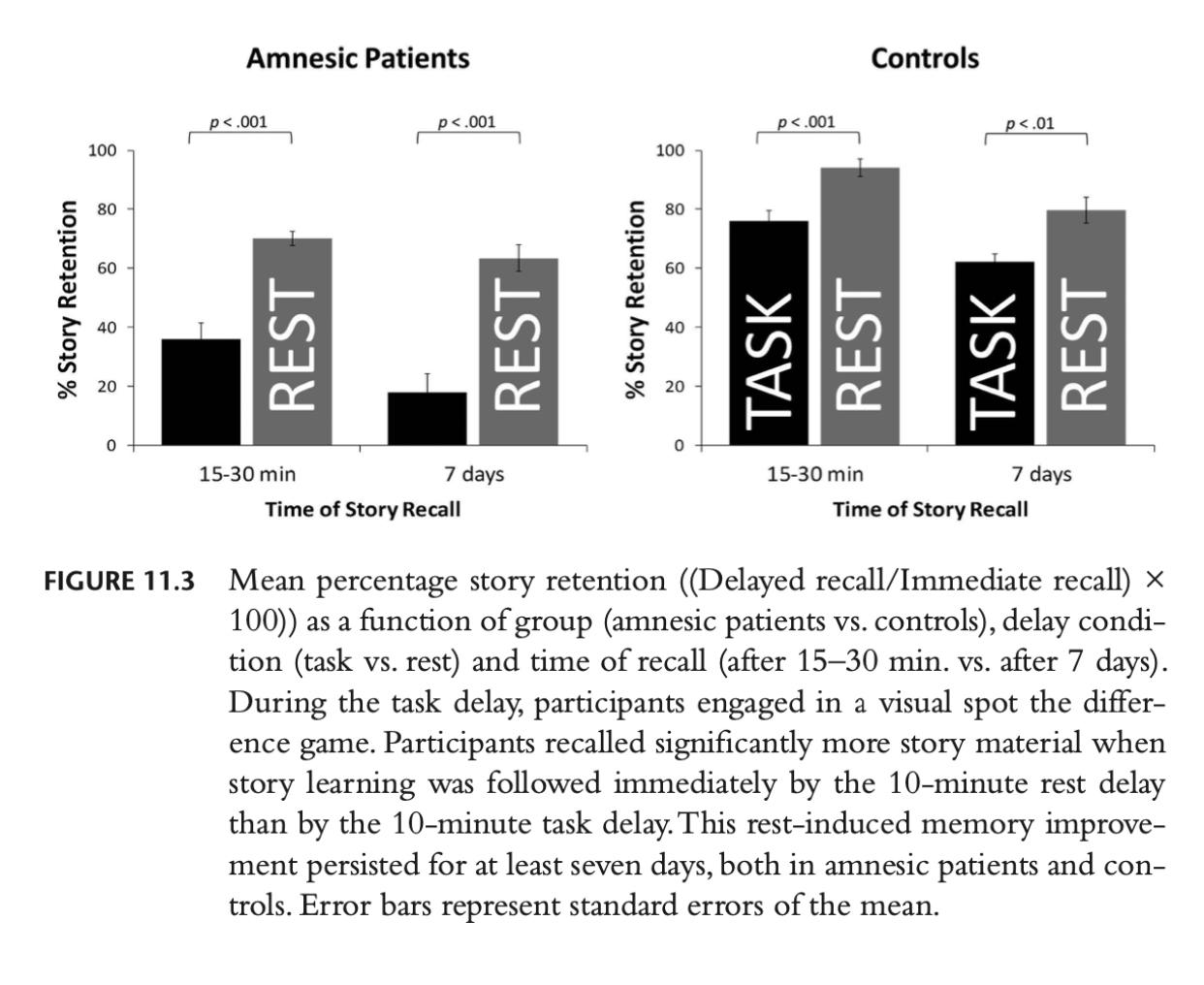 anterograde amnesia research from Dr. Michaela Dewar