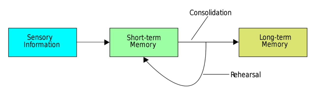 process that transfers short term memory into long term memory