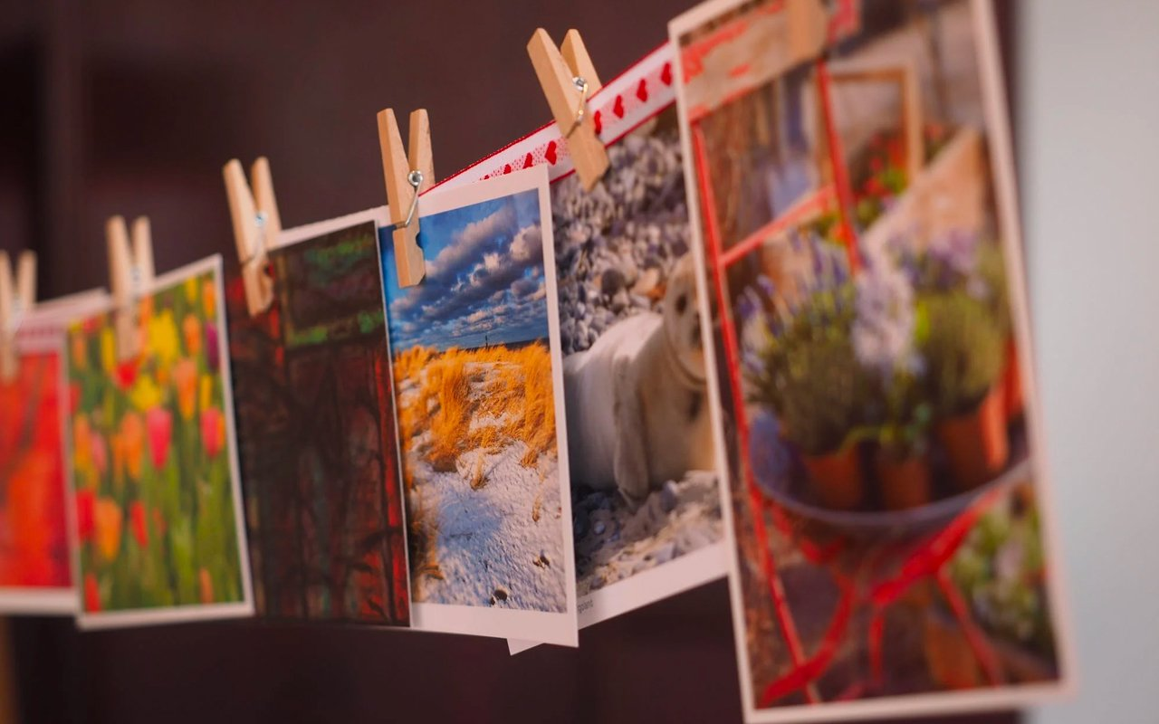 photographs hanging in a line